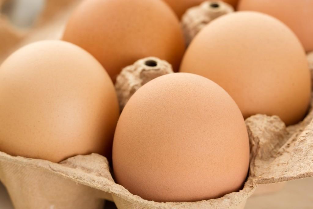 grove farm leicester salmonella in eggs